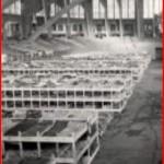 Westfalenhalle - un dortoir de 3000 lits en novembre 1940 (photo CICR V P HIST 01573 01 public)