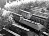 meggen-obseques-sous-la-neige-des-72-victimes-de-l-explosion-du-9-fevrier-1944-5